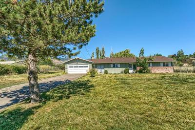 Ashland Single Family Home For Sale: 840 S Valley View Road