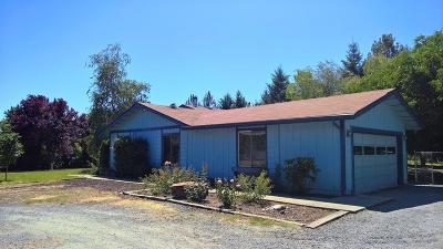 Merlin, Sunny Valley, Wimer, Rogue River, Wilderville, Grants Pass, Hugo, Murphy, Wolf Creek Single Family Home For Sale: 900 Pleasant Valley Road