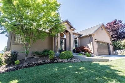 Medford Single Family Home For Sale: 3817 Annettes Way