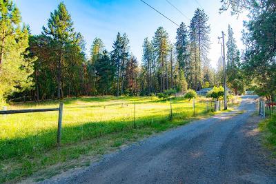 Grants Pass Single Family Home For Sale: 100 Pony Lane
