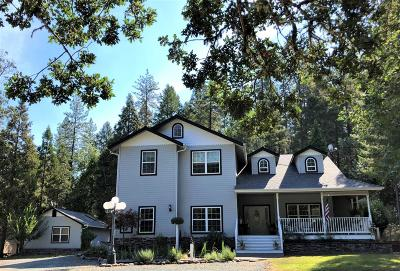 Merlin, Sunny Valley, Wimer, Rogue River, Wilderville, Grants Pass, Hugo, Murphy, Wolf Creek Single Family Home For Sale: 615 Abegg Road