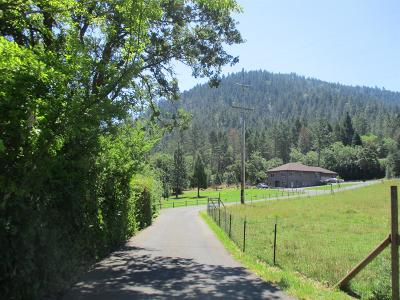 Grants Pass Single Family Home For Sale: 207 Greens Creek Road