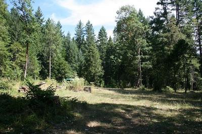 Josephine County Residential Lots & Land For Sale: 1400 Lower Wolf Creek Road