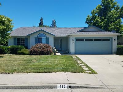 Merlin, Sunny Valley, Wimer, Rogue River, Wilderville, Grants Pass, Hugo, Wolf Creek, Murphy Single Family Home For Sale: 623 SW Leonard Street