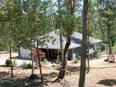 Grants Pass Single Family Home For Sale: 241 Wisteria Lane