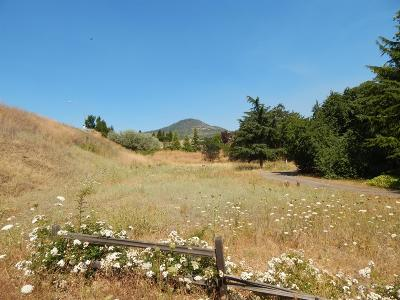 Jackson County, Josephine County Residential Lots & Land For Sale: N Foothill Road