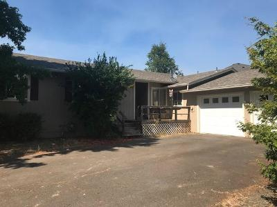 Cave Junction Single Family Home For Sale: 249 Shadowbrook Drive