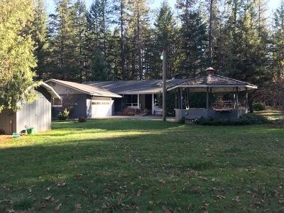 Rogue River Single Family Home For Sale: 1076 Queens Branch Road