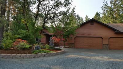 Grants Pass Single Family Home For Sale: 141 Iris Lane