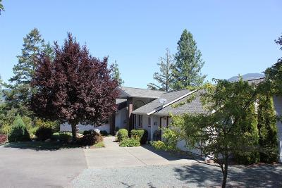 Single Family Home For Sale: 412 Anita Drive