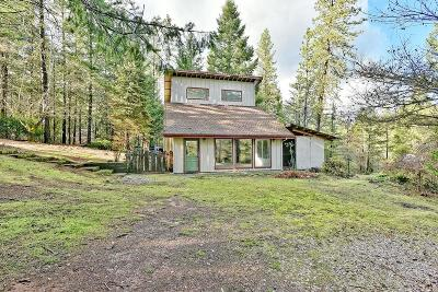 Jackson County, Josephine County Single Family Home For Sale: 4299 Bear Branch Road