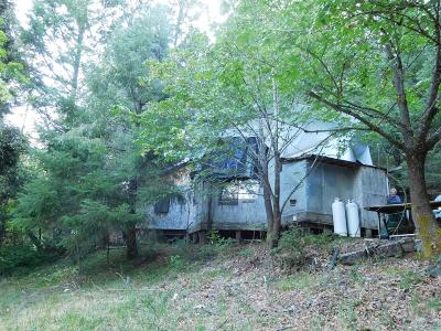 Selma Single Family Home For Sale: 5645 N Thompson Creek Road