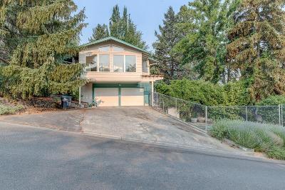 Ashland Single Family Home For Sale: 1991 Mohawk Street