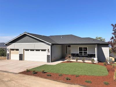 Jackson County, Josephine County Single Family Home For Sale: 1318 Poppy Ridge Drive