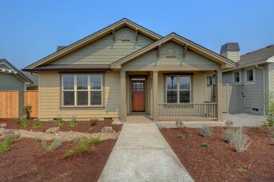 Medford Single Family Home For Sale: 3865 Shamrock Drive
