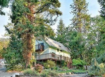 Single Family Home For Sale: 803 Portland Avenue