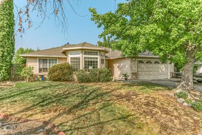 phoenix Single Family Home For Sale: 117 Meadow View Drive