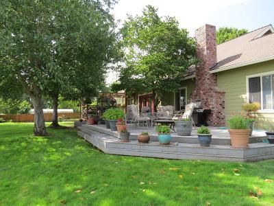 Merlin, Sunny Valley, Wimer, Rogue River, Wilderville, Grants Pass Single Family Home For Sale: 5235 Lower River Road
