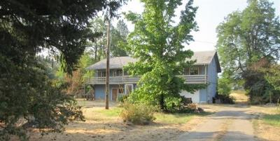 gold hill Single Family Home For Sale: 3253 Rogue River Highway