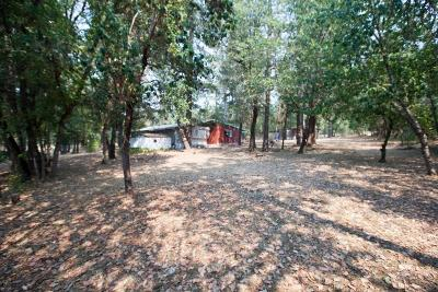 Rogue River Single Family Home For Sale: 2686 E Evans Creek Road