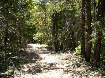 Cave Junction Residential Lots & Land For Sale: French Peak Road