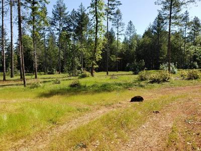 Merlin, Sunny Valley, Wimer, Rogue River, Wilderville, Grants Pass Residential Lots & Land For Sale: 3368 Riverbanks Road