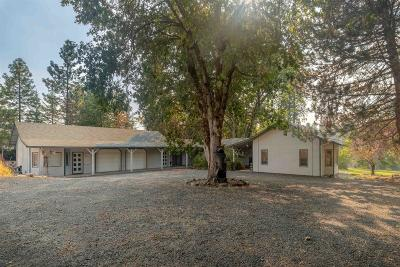 Jackson County, Josephine County Single Family Home For Sale: 1205 Old Ferry Road