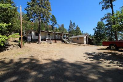 Grants Pass Single Family Home For Sale: 2424 Limpy Creek Road