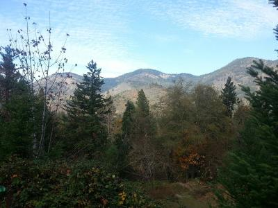 Josephine County Residential Lots & Land For Sale: Rogue River Highway