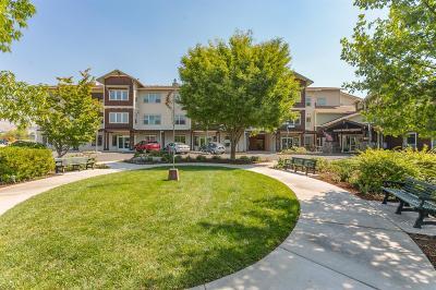 Ashland Condo/Townhouse For Sale: 941 Mountain Meadows Circle
