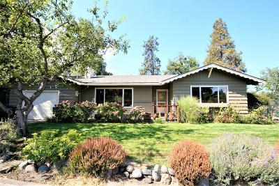Ashland Single Family Home For Sale: 625 Lit Way