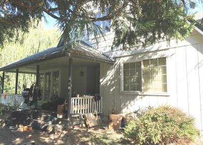 Jackson County, Josephine County Single Family Home For Sale: 2080 Mill Creek Drive