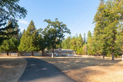 Rogue River Single Family Home For Sale: 1168 Queens Branch Road