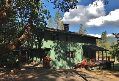 Rogue River Single Family Home For Sale: 14326 E Evans Creek Road