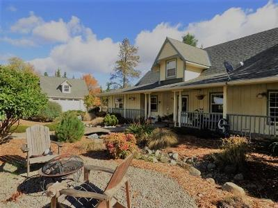 Grants Pass Single Family Home For Sale: 734 Pickett Creek Road