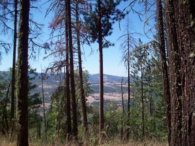 Residential Lots & Land For Sale: South Fork Little Butte Cr Road