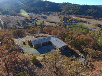 Single Family Home For Sale: 4511 Griffin Creek Road