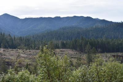 Josephine County Residential Lots & Land For Sale: 8050 Lower Grave Creek Road