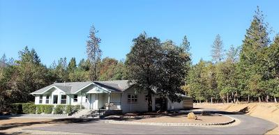 Grants Pass Single Family Home For Sale: 250 Springbrook Drive