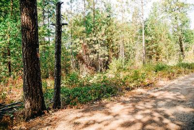 Residential Lots & Land For Sale: E River Street