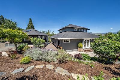Ashland Single Family Home For Sale: 1595 Peachey Road