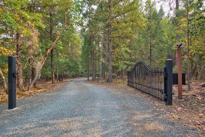 Rogue River Single Family Home For Sale: 2335 Queens Branch Road