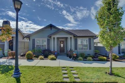 Medford Single Family Home For Sale: 3838 Calle Vista Drive