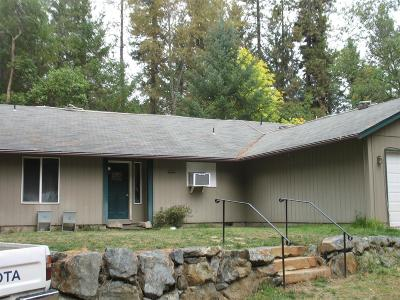 Rogue River Single Family Home For Sale: 918 Minthorne Road