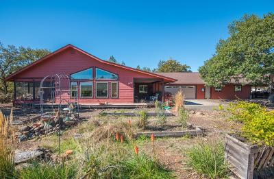 Eagle Point Single Family Home For Sale: 2780 Rogue River Drive