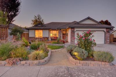 Single Family Home For Sale: 248 Peebler Way