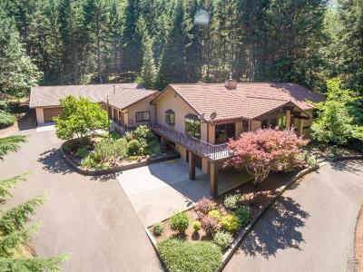 Grants Pass Single Family Home For Sale: 115 Sloan Mountain Lane