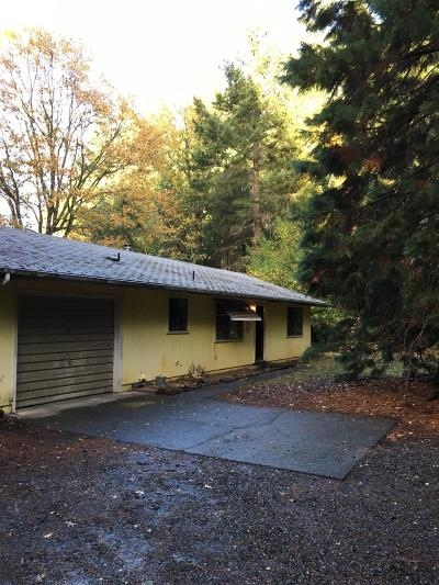 Single Family Home For Sale: 101 Cascade Drive
