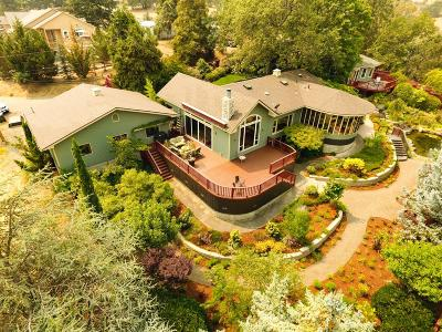 Ashland Single Family Home For Sale: 610 Orchard Street