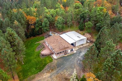 Rogue River Single Family Home For Sale: 408 Sykes Creek Road